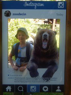 ...foto s medvědem...